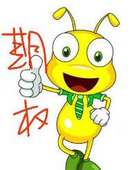 期权小蚂蚁