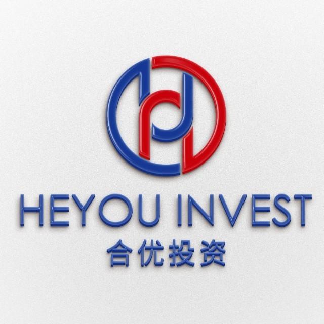 上海合优投资